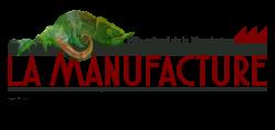 Pole Culturel de la Manufacture